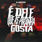 É DELE QUE AS PIRANHA GOSTA by DJ NpcSize