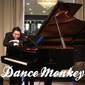 Dance Monkey (Piano Version) de Ray Mak