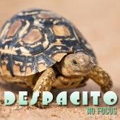 Despacito (Cover Version) de NoFocus