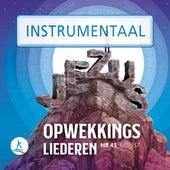 Opwekkingsliederen 45 (845-857) (Instrumentaal) von Stichting Opwekking