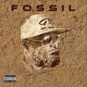 FOSSIL by Dre Lane