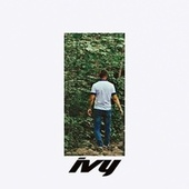 Ivy by Stevie Zita