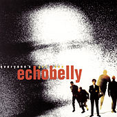 Everyone's Got One by Echobelly