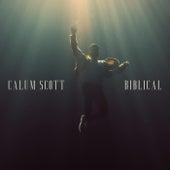 Biblical by Calum Scott