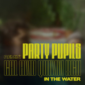 In the Water (Party Pupils Remix) de Cal