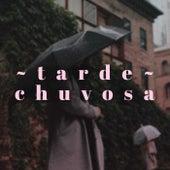 Tarde Chuvosa de Various Artists
