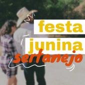 Festa Junina Sertanejo von Various Artists