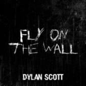 Fly on the Wall by Dylan Scott