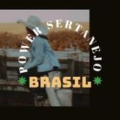 Power Sertanejo Brasil de Various Artists
