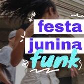Festa Junina Funk de Various Artists