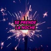 Se Prende La Noche by Various Artists