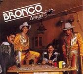 Bronco Amigo fra Bronco
