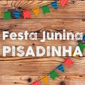 Festa Junina Pisadinha 2021 de Various Artists