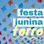 Festa Junina Forró de Various Artists