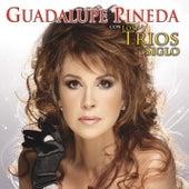 Con los Tríos del Siglo by Guadalupe Pineda