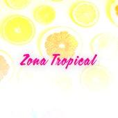 Zona Tropical von Various Artists