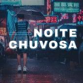 Noite Chuvosa de Various Artists