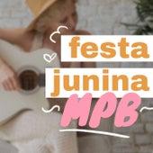 Festa Junina MPB de Various Artists