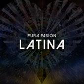 Pura Pasión Latina de Various Artists