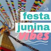 Festa Junina Vibes de Various Artists