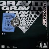 Gravity (Illyus & Barrientos Remix) by M-22