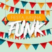 Festa Junina Funk 2021 de Various Artists