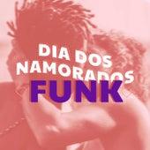 Dia dos Namorados Funk de Various Artists