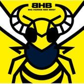 BIG HORNS BEE BEST by Big Horns Bee