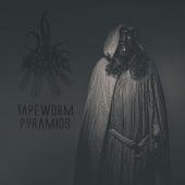Tapeworm Pyramids von The Negative Bias