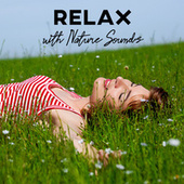 Relax with Nature Sounds: Birds & Water with Piano Melodies Perfect to Calm Down and Stress Relief fra Nature Sounds (1)