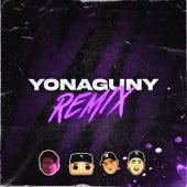 Yonaguny (Remix) de Tomy Deejay
