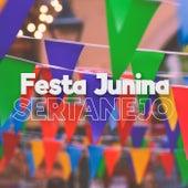 Festa Junina Sertanejo 2021 de Various Artists