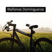 Mañanas Domingueras de Various Artists