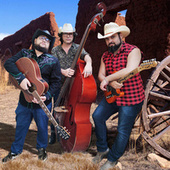 Cover Songs by Crazed Country Rebels
