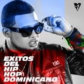 EXITOS DEL HIP HOP DOMINICANO van Lapiz Conciente