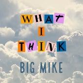 What I Think de Big Mike