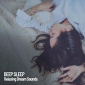 Deep Sleep: Relaxing Dream Sounds by Sleep Sounds of Nature