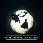 Nature Sounds at Your Home: Relaxing Piano with Nature, Total Harmony, Relaxation Time by Echoes of Nature