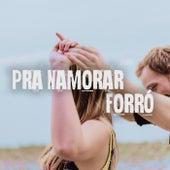 Pra Namorar Forró de Various Artists