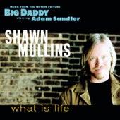 What Is Life von Shawn Mullins