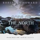 Gods Of The North de Imagination Audio Books