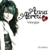 Vinegar by Anna Abreu