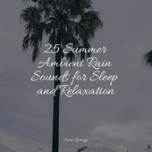 25 Summer Ambient Rain Sounds for Sleep and Relaxation by Sleepy Times