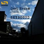 Skybound van Sunship