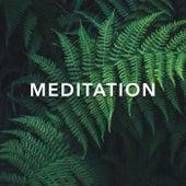 Meditation by Spa Music (1)