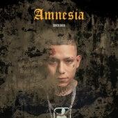 Amnesia de La Santa Grifa