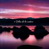 Vibes de la nature: Des sons apaisants pour se détendre, Spa, Musique de méditation zen de Zen ambiance d'eau calme