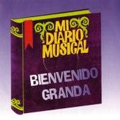 Mi Diario Musical by Bienvenido Granda