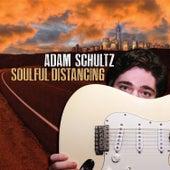 Soulful Distancing von Adam Schultz