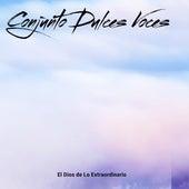 El Dios de Lo Extraordinario (Cover) by Conjunto Dulces Voces